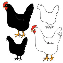 HEN, CHICKEN outline and silhouette vector