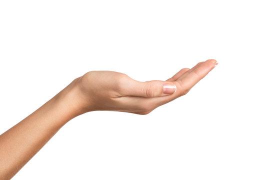 Beauty female hand