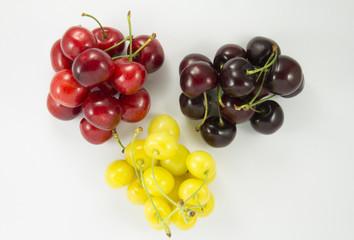 Colored handfuls of cherries (sweet cherry)