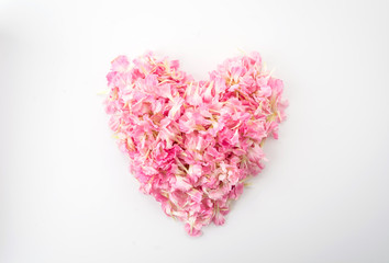 pink heart shape by carnations petal
