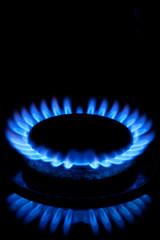 Gas Hob Flames