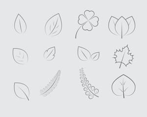 Leaf Line Design Vector