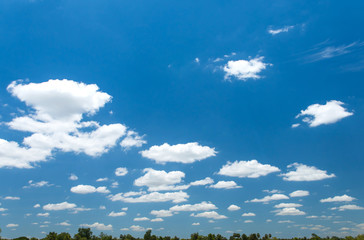 Blue sky and cloud over the trees