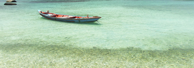 panoramic boat