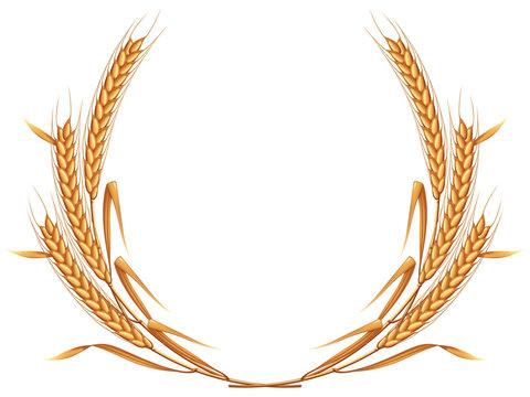 Wheat wreath. Photo-realistic EPS10 vector illustration.