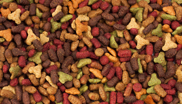 Dry pet food (dog or cat) multicolored background