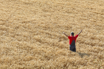 Agricultural scene, happy farmer in wheat field hands, thumb up