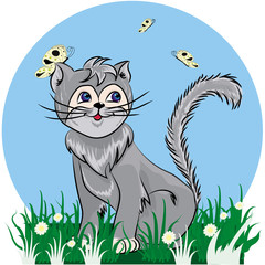 cat colored in grey with butterfly