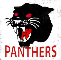 Vintage Panthers | T-shirt Printing Graphic
