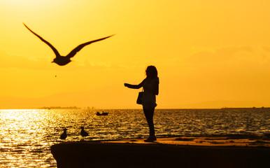 Woman feeding seagull silhouette