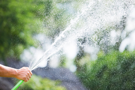 Man watering the garden from hose on sunny day