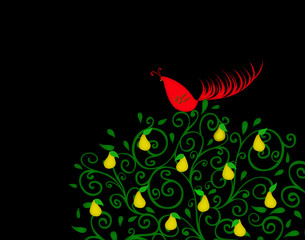 Partridge in a Pear Tree on Black With Room for Text