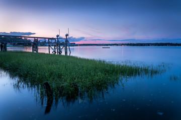 Grassy Watter on Harbor Under Pink Sunset