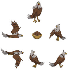 Eagle cartoon Character set collection