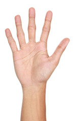 Hand gestures counting five, isolated