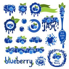 Blueberry design elements set.