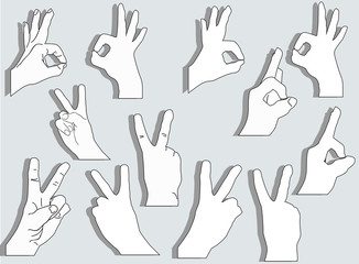 set of twelve hands isolated on grey