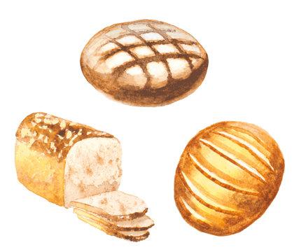 watercolor bread set. vector illustration