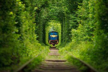 secret train 'tunnel of love' in ukraine. Summer