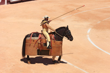 Wall Murals Bullfighting Picador
