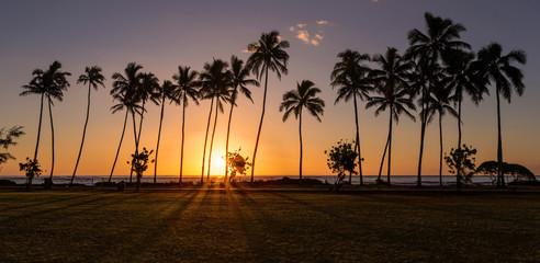 Kapaa beach Sunrise with silhouette of palm trees