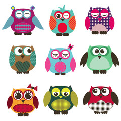 a set of owl