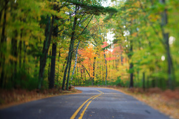 Road with Curve Through Autumn Forest in Wisconsin