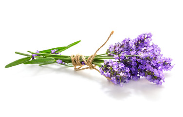 Keuken foto achterwand Lavendel Lavender bunch isolated on white background