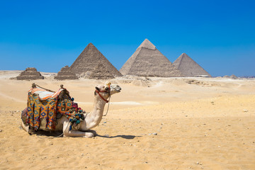 Giza in Cairo, Egypt.