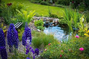 Blick in den Garten mit Teich