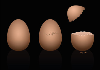 Three brown chicken eggs - intact, broken and open. Three-dimensional isolated vector illustration on black background.