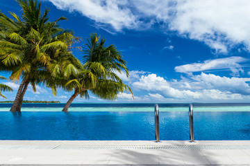 infinity pool with coco palms in front of the ocean