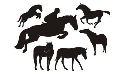 horse / horse racing silhoutte