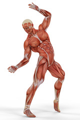 muscle medical man ballet 2