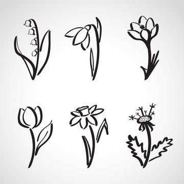 Ink style  sketch set - spring flowers