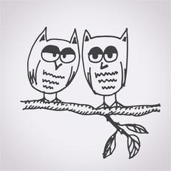 Owl free hand drawn