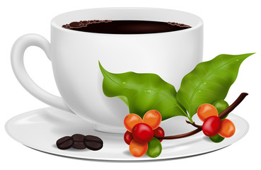 Coffee cup with roasted beans and fresh green coffee branch.