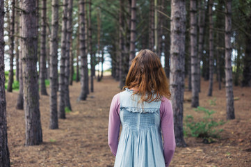 Woman standing in forest and looking at trees