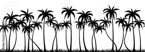 Wall mural Palm trees silhouette seamless vector pattern