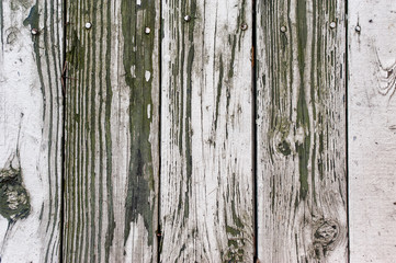 Wood background texture. old panels close up. color image in horizontal orientation