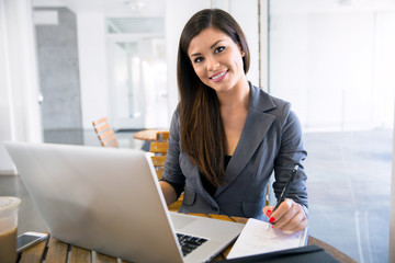 Attractive attorney law student lawyer working from her computer laptop