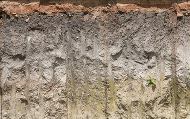soil profile in cross section.