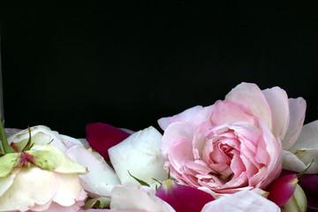 Schild zum Beschriften für Rosengarten