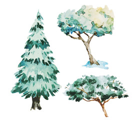 Watercolor trees