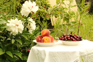 peaches, cherries in a ceramic plate in the garden courtyard of the tablecloth table summer