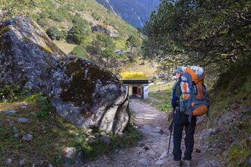 Wall Mural - Woman backpacker hiking trail in Nepal.