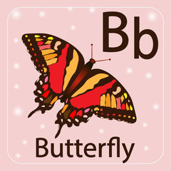 English letter B , butterfly