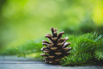 Wall Mural - Pine cone on wooden table