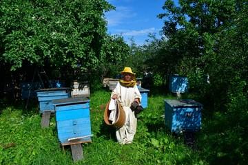 начинающий пчеловод