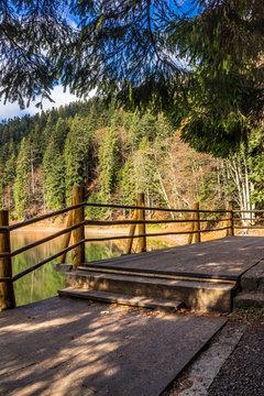 pier on mountain Lake near  forest